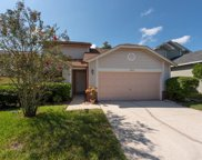 2223 Springrain Drive, Clearwater image