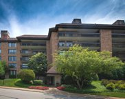 3801 Mission Hills Road Unit 407B, Northbrook image