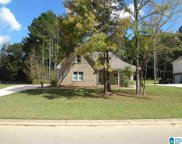 85 Cedar Branch Circle, Odenville image