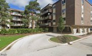 1321 S Finley Road Unit #409, Lombard image