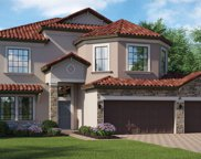 11886 Frost Aster Drive, Riverview image