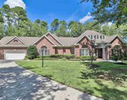 971 Cat Briar Ct., Longs image