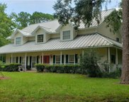 12212 Twin Branch Acres Road, Tampa image