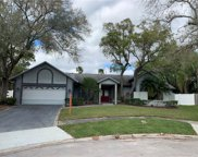 507 Fayette Circle N, Safety Harbor image