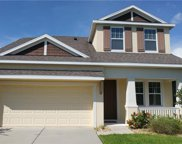 11333 Quiet Forest Drive, Tampa image