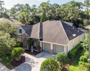 11919 Meridian Point Drive, Tampa image