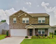 15241 Tyler Mill Drive, Athens image