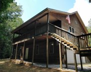 110 Hooterville Drive, Blythewood image