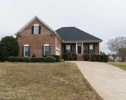 208 W Coosaw Court, Roebuck image