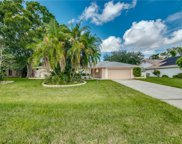 14556 Aeries Way  Drive, Fort Myers image
