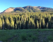 Forest Service Road 730, Crested Butte image