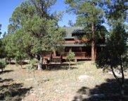 3082 Durango, Happy Jack image