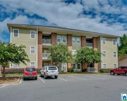 3218 Veterans Memorial Pkwy Unit 3310, Tuscaloosa image