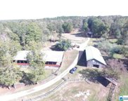 8460 Wolf Creek Rd, Pell City image