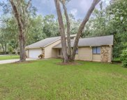 81 Hollow Branch Crossing, Ormond Beach image