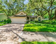 1207 Willowick Circle, Safety Harbor image