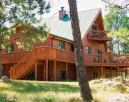 12346 Rose Place, Custer image