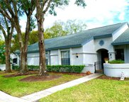 3405 Killdeer Place, Palm Harbor image