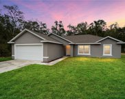 10316 N Holcomb Drive, Dunnellon image