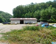 52323 Hwy 231, Oneonta image