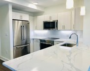 20 Penniman Rd Unit 402, Boston image