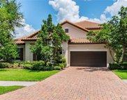 1107 Isobel Reserve Lane, Tampa image