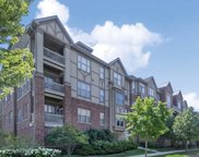 1781 Tudor Lane Unit 202, Northbrook image