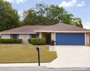 1706 Deer Path St, San Antonio image