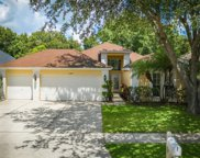 11707 Carrollwood Cove Drive, Tampa image