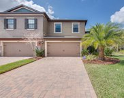 28431 Pleasant Bay Loop, Wesley Chapel image