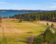735 Rosler Rd, Friday Harbor image