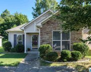 285 Fox Run Cir, Pell City image