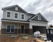 9009 Outpost Dr, Spring Hill image