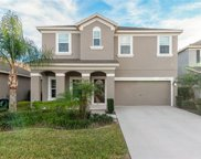 8113 Lazy Bear Lane, Winter Park image