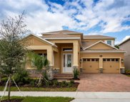 8142 Common Teal Court, Winter Garden image