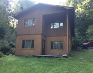 29 Teaberry, Cullowhee image