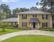 4214 Winding Willow Drive, Tampa image