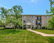 12902 West 159 Street Unit 2C, Homer Glen image