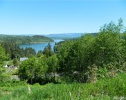 227 Lakeview Dr, Mossyrock image