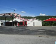 21690 Hwy 75, Oneonta image