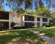 6004 Laketree Lane Unit N, Temple Terrace image