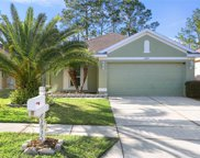 23935 Coral Ridge Lane, Land O' Lakes image
