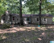6708 Hickory Trail, Pinson image