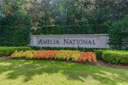 95299 Amelia National Parkway, Fernandina image