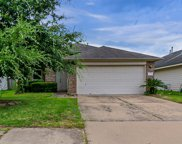 19618 Tully Meadows Court, Katy image