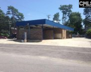 1501 Brackenridge Road, Columbia image