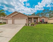 14940 Coopers Hawk  Way, Fort Myers image
