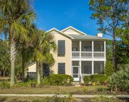 205 Crooked River Rd, Carrabelle image