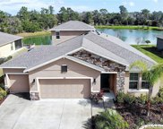 323 River Vale Lane, Ormond Beach image