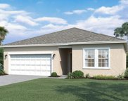 16443 Blooming Cherry Drive, Groveland image